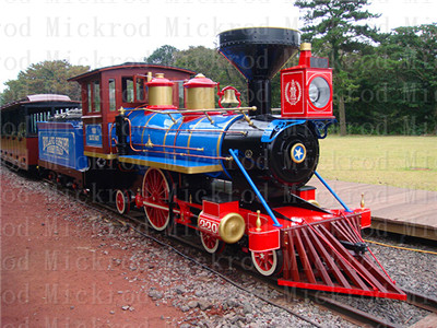 Amusement park electric trains
